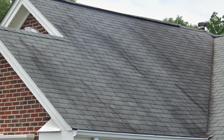 Roof Stains Streaks