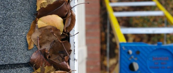 Easy and SAFE Ways To Clean Gutters