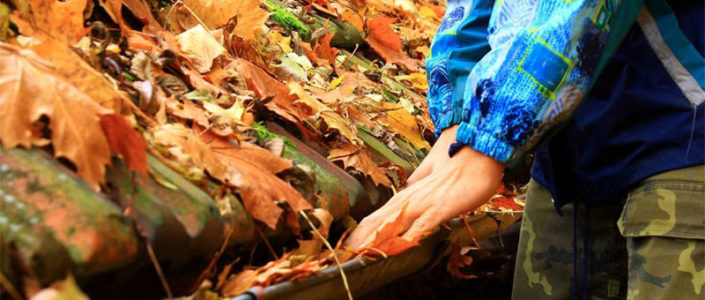 What Time of Year Is Best To Clean Your Gutters? Fall or Spring?